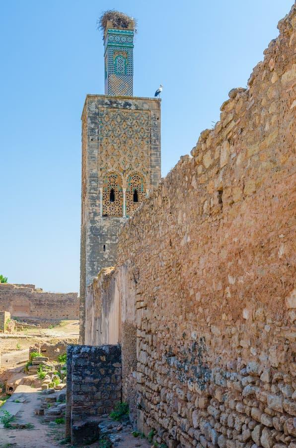 Старые руины некрополя Chellah с мечетью и мавзолеем в марокканськой столице Рабате ` s, Марокко, Северной Африке стоковое изображение rf