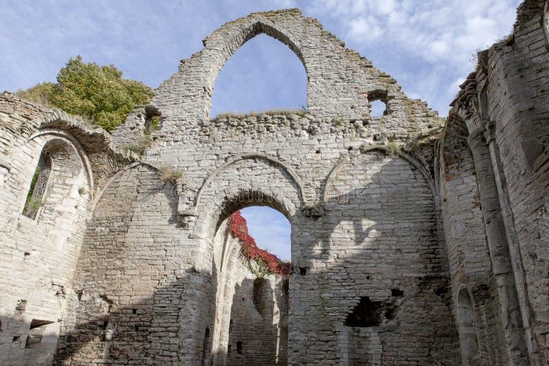 Старые руины, Visby, Готланд стоковое изображение