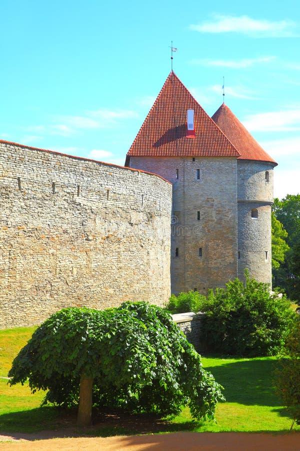 Старые стены города Таллина стоковая фотография