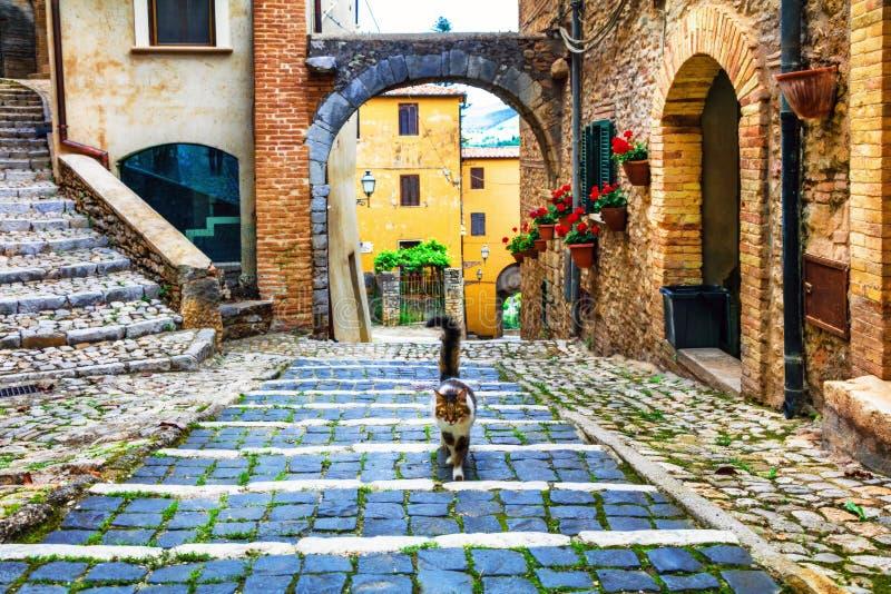 Старые улицы итальянских деревень Casperia в Риети, Лацие стоковая фотография rf
