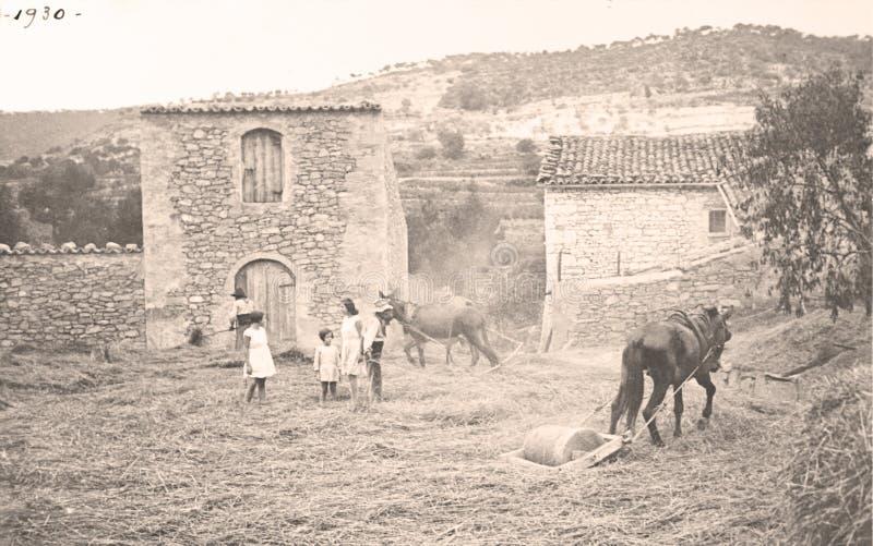 Старые фермеры стоковое изображение