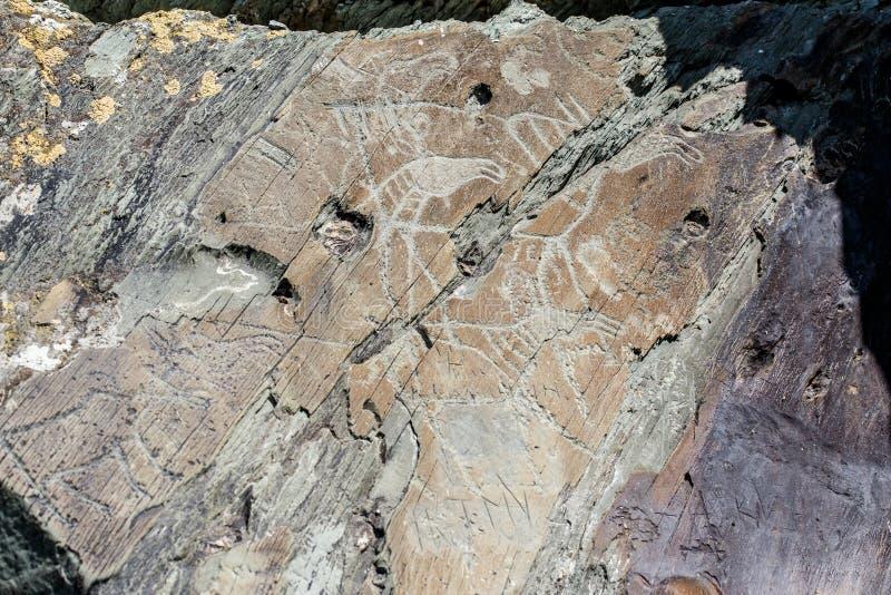 Старые чертежи пещеры и высекать, петроглифы на стене Сибирь, Россия стоковые изображения rf