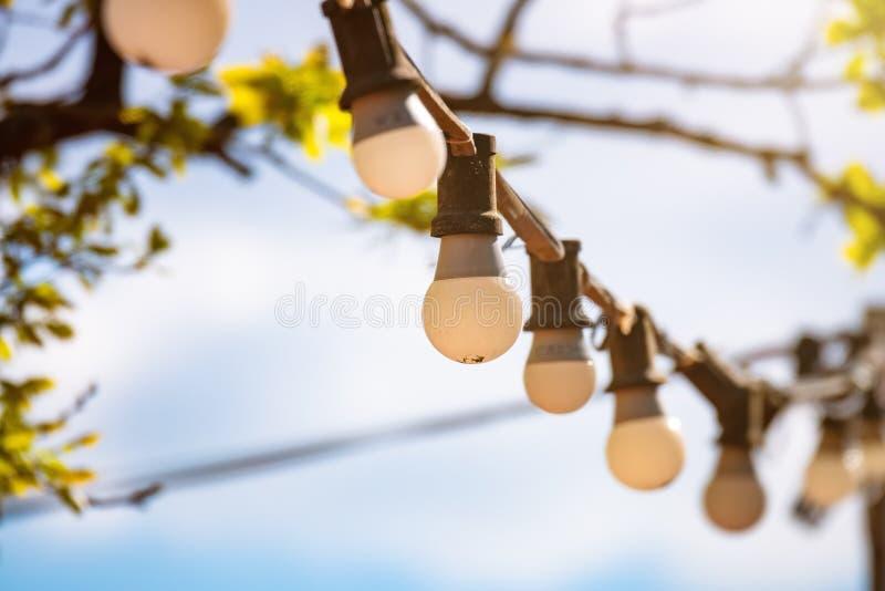 старые электрические лампочки снаружи стоковые изображения rf