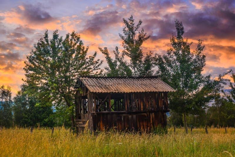 Старый амбар на крае леса с высокорослыми зеленой травой и полевыми цветками на заходе солнца Введенное в моду фото запаса в Румы стоковое изображение rf