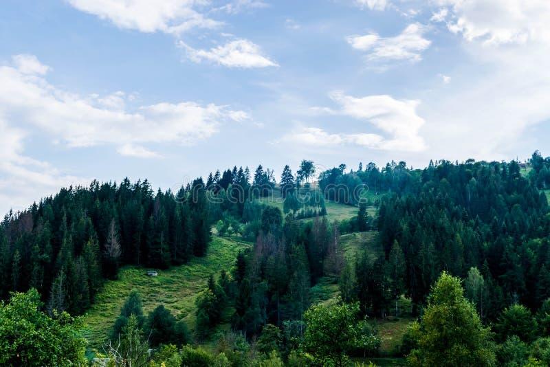 Старый амбар на лужайке в украинских горах стоковое фото