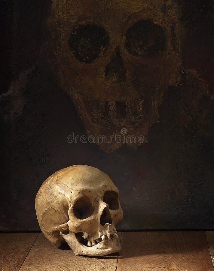 старый вид сбокуый черепа стоковая фотография