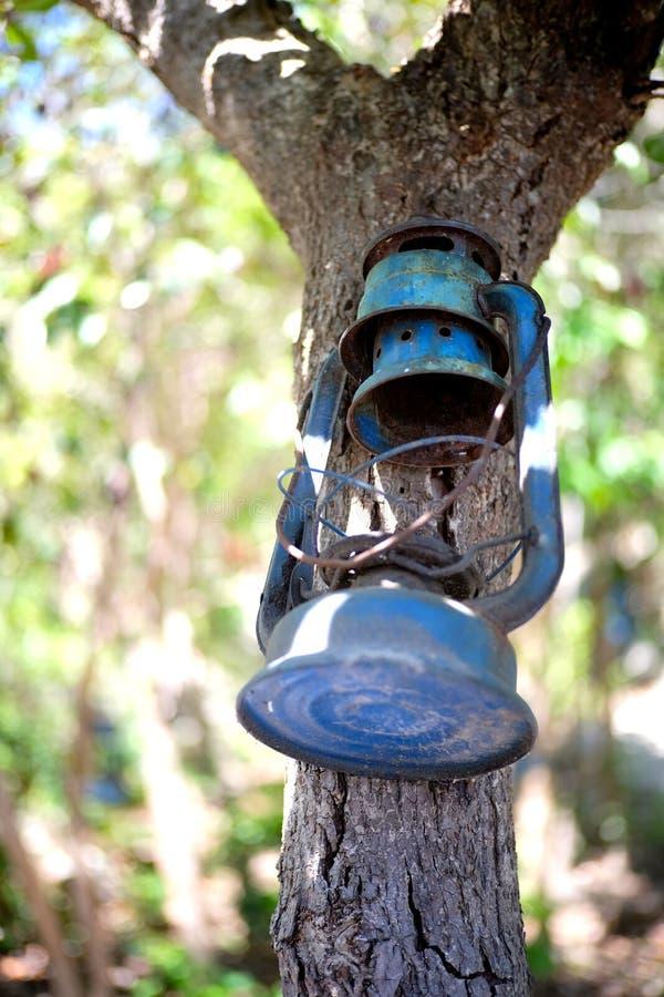Старый вид фонарика на дереве стоковое фото