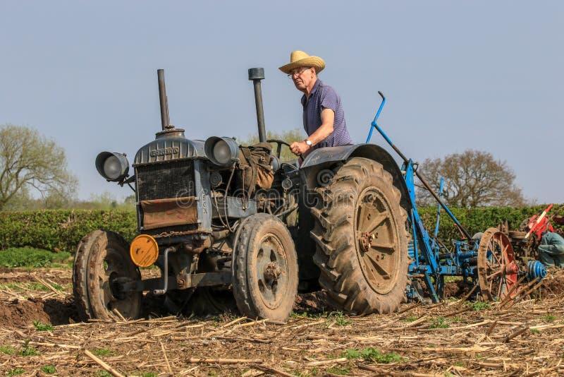 Старый голубой трактор майора fordson на паша спичке стоковые фотографии rf