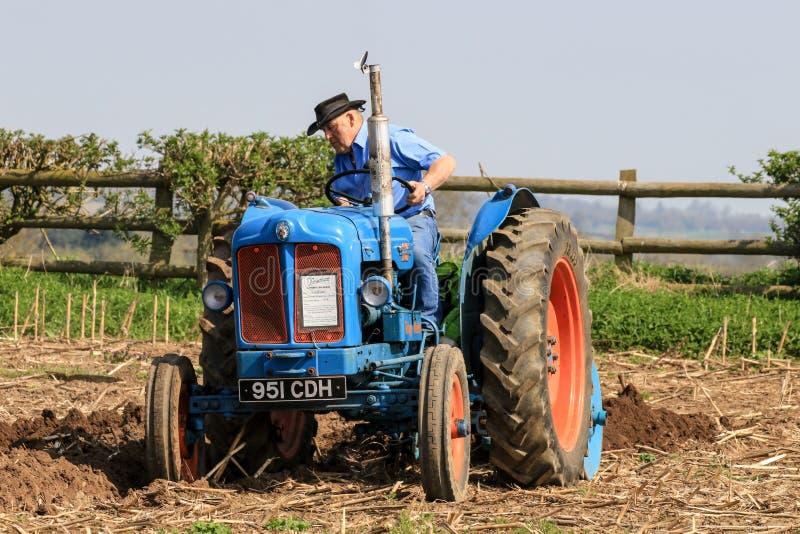 Старый голубой трактор майора fordson на паша спичке стоковая фотография