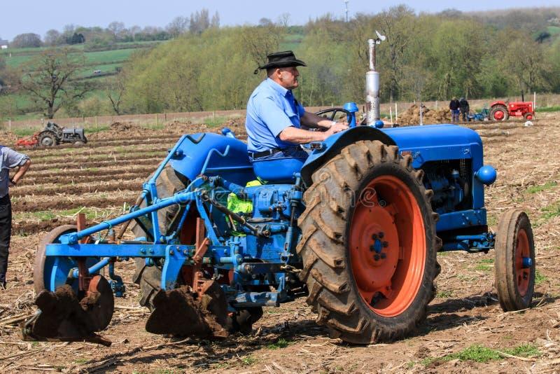 Старый голубой трактор майора fordson на паша спичке стоковые изображения