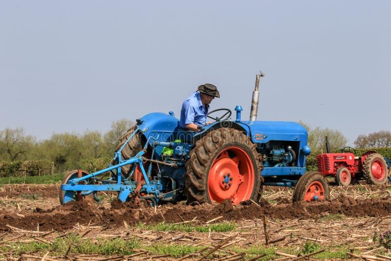 Старый голубой трактор майора fordson на паша спичке стоковые фото
