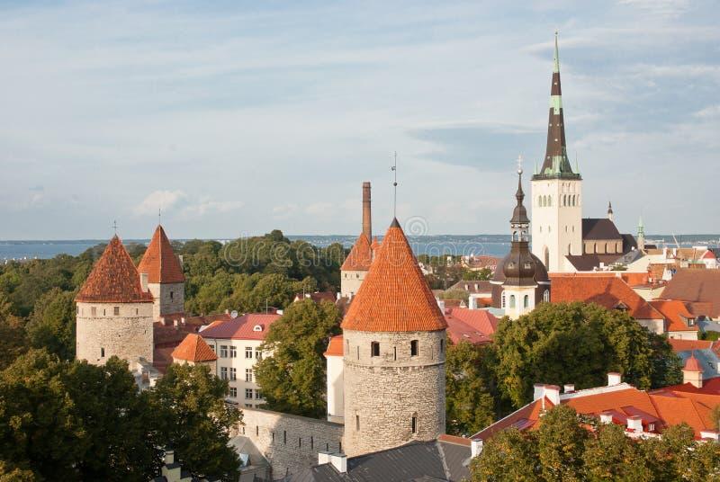 Старый горизонт Таллина стоковое фото