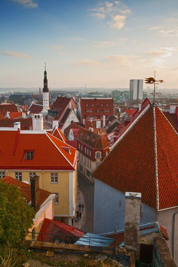 Старый городок, Таллин стоковая фотография rf