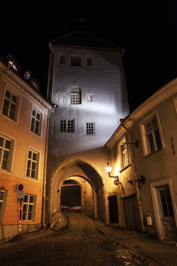 Старый городок Таллина, Эстонии на ноче стоковые фото