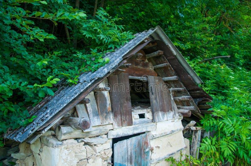 Старый деревянный дом около леса и лужайки стоковое изображение rf