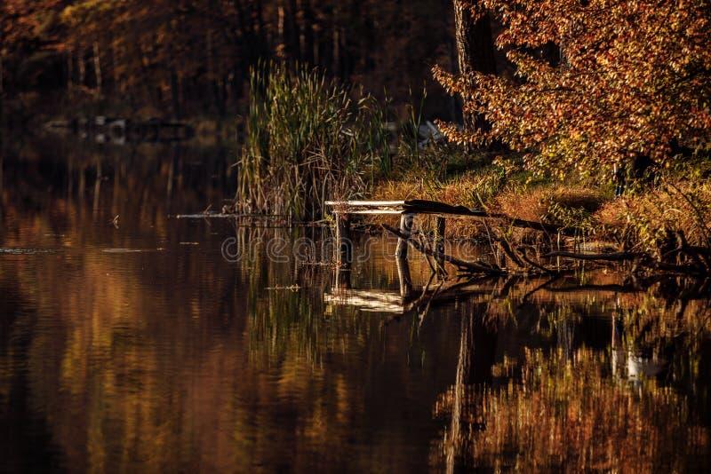 Старый деревянный мост на озере в осени Деревянный мост на озере осень, платформа для рыболовов стоковая фотография