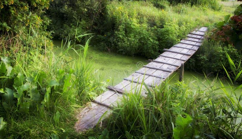 Старый деревянный мост через малое реку на теплый летний день стоковое фото rf