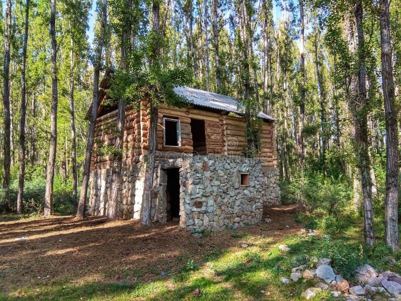 Старый дом в Forrest стоковое изображение rf