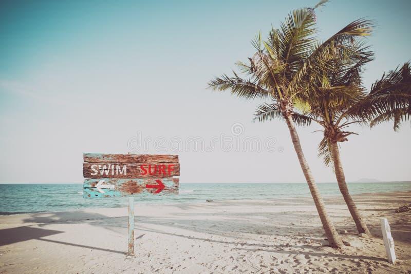Старый деревянный знак проводит заплывание и серфинг на тропическом пляже в лете стоковая фотография rf