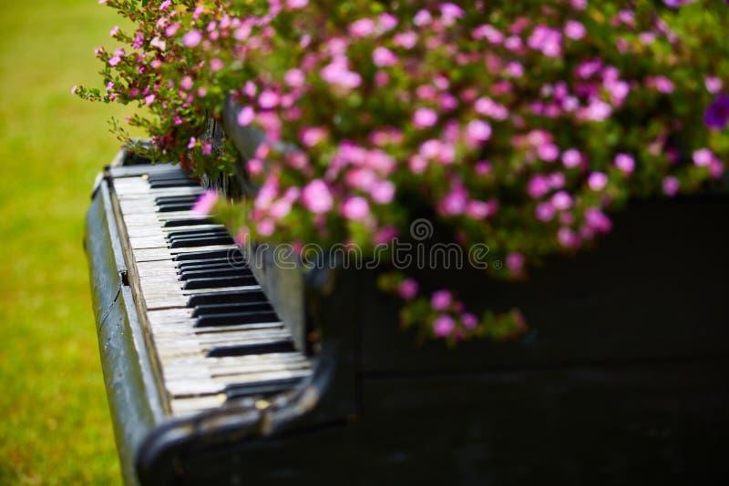 Старый деревянный рояль украшенный с цветками стоковое фото rf