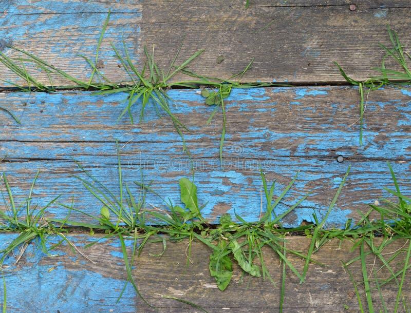 Старый деревянный текстурированный цвет краски предпосылки стоковые изображения rf
