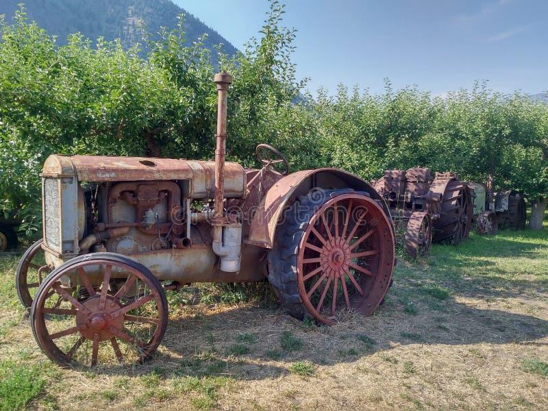Старый заржаветый винтажный трактор в поле стоковое изображение rf