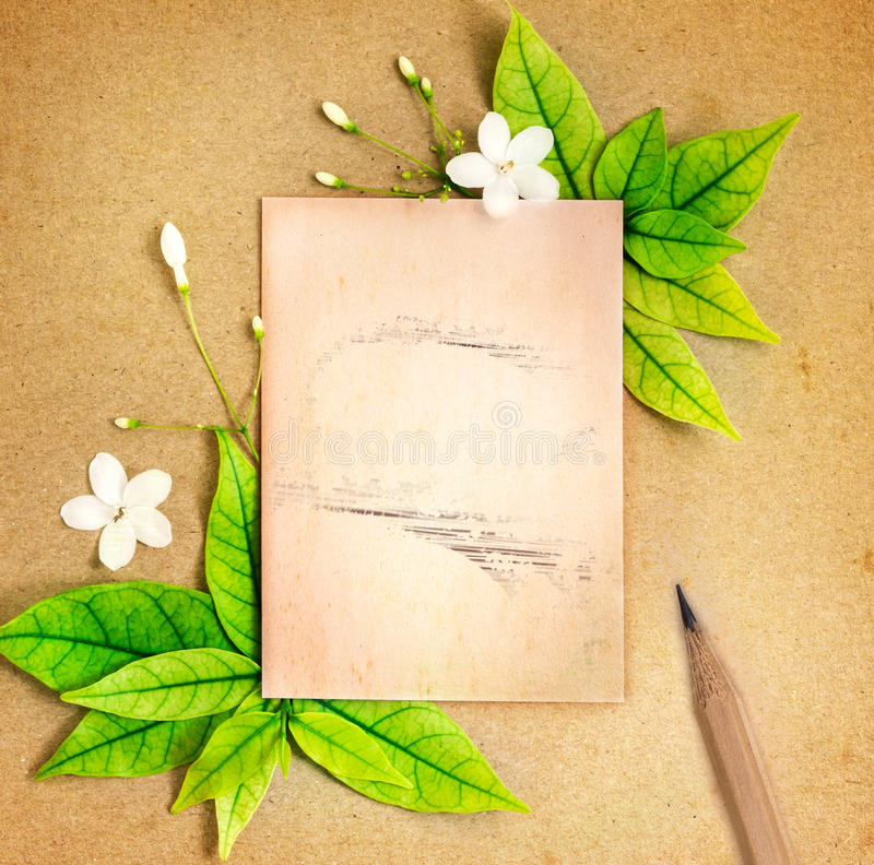 Старый лист чистого листа бумаги с свежей границей листьев зеленого цвета весны стоковое фото rf