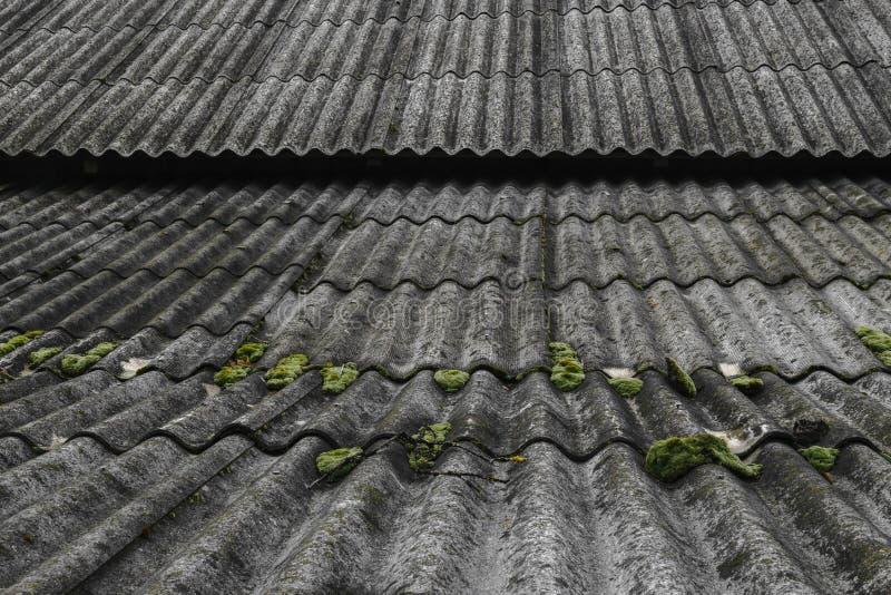 Старый и покрытый с шиферами крыши зеленого мха волнистыми покрывает амбар стоковое изображение