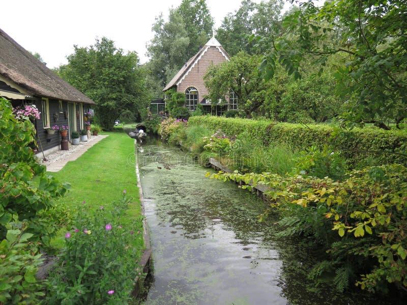 Старый канал перерастанный с шламом и duckweed стоковая фотография