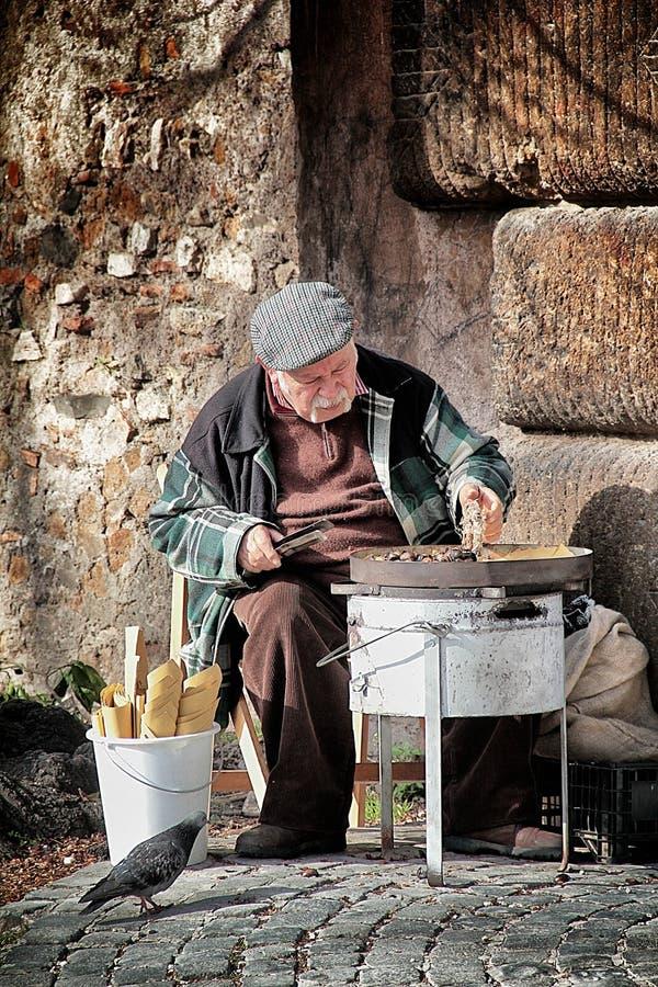 Старый каштан в Риме стоковое фото