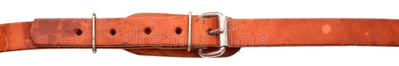 Старый кожаный изолированный пояс стоковые изображения