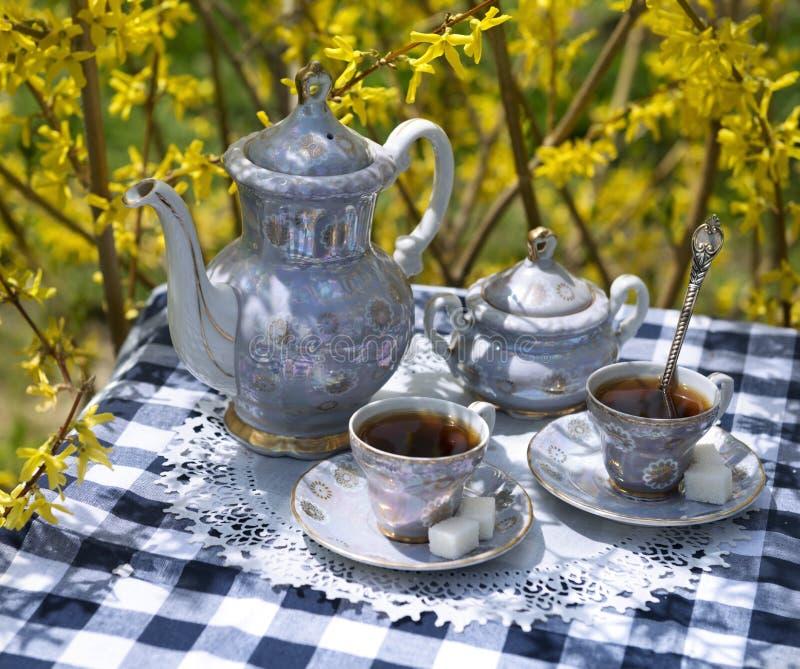 Старый комплект чая на проверенной скатерти стоковое фото rf