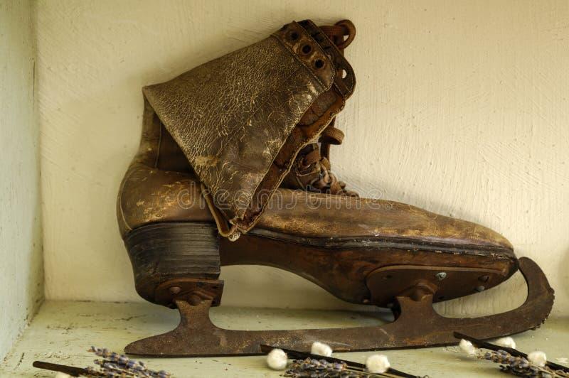 Старый конек льда стоковое фото
