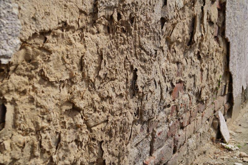 Старый конец-вверх стены стоковая фотография
