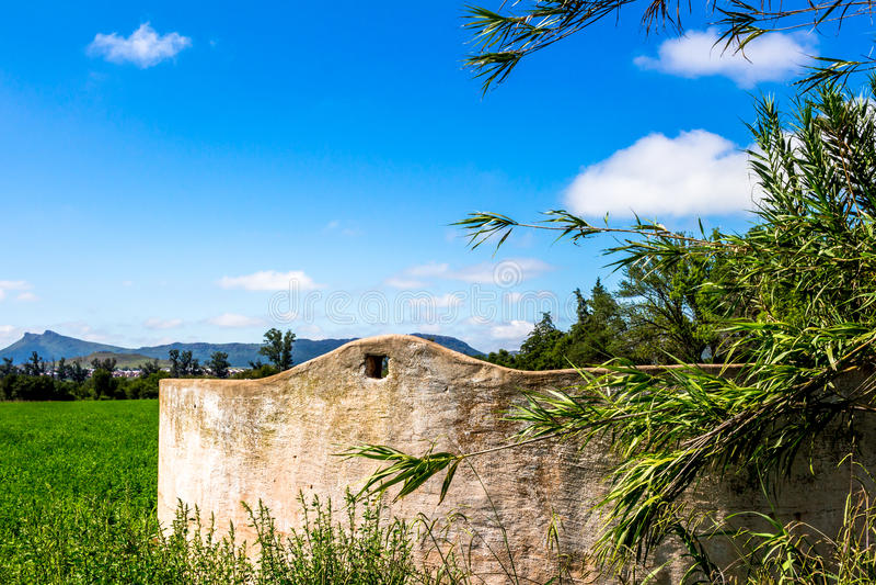Старый конец стены запруды фермы вверх с тростниками стоковые фотографии rf