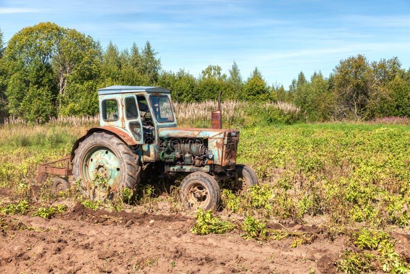 Старый, который катят аграрный трактор используемый на поле картошки стоковое фото