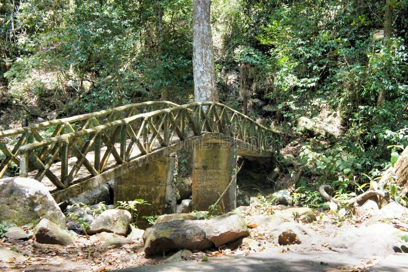Старый мост над потоком в древесинах стоковая фотография rf