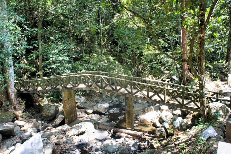 Старый мост над потоком в древесинах стоковое фото