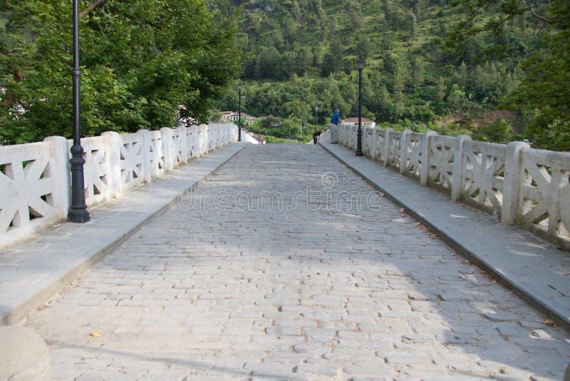 Старый мост тахты в Berat, Албании стоковое фото rf