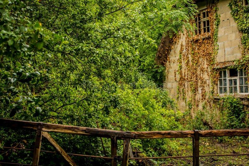 Старый перерастанный дом стоковая фотография rf