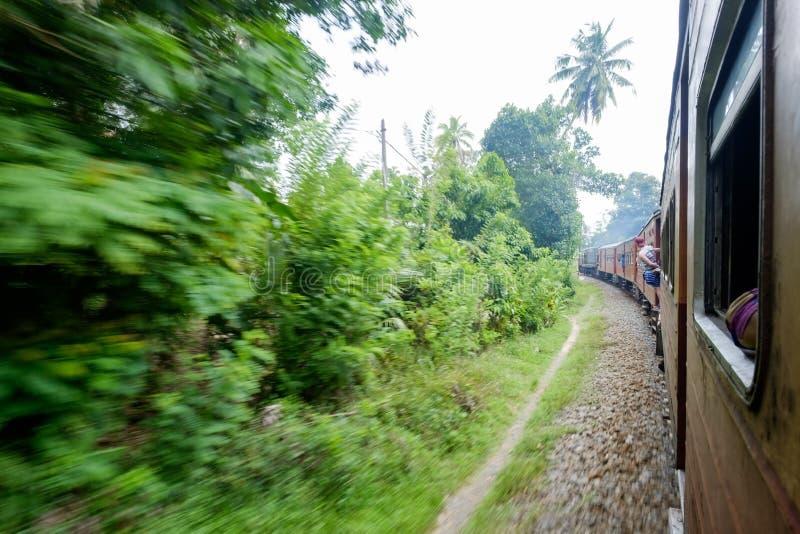 Старый поезд двигая через сторону страны в солнечном дне в Шри-Ланке стоковое изображение rf