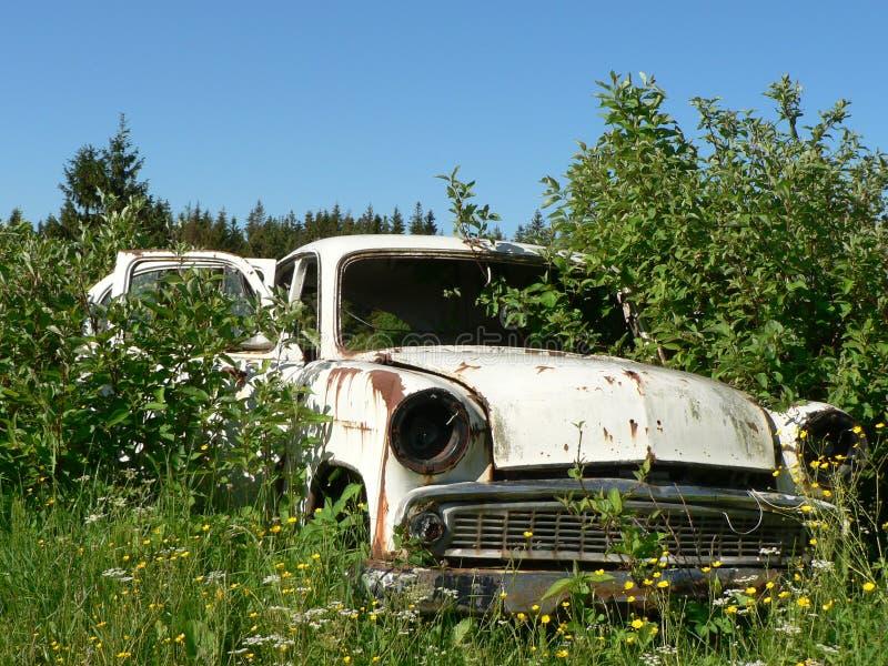 Старый покинутый автомобиль стоковое изображение rf