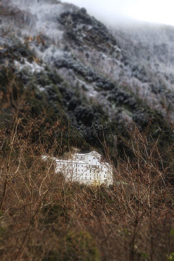 Старый покинутый монастырь в лесе стоковое фото rf