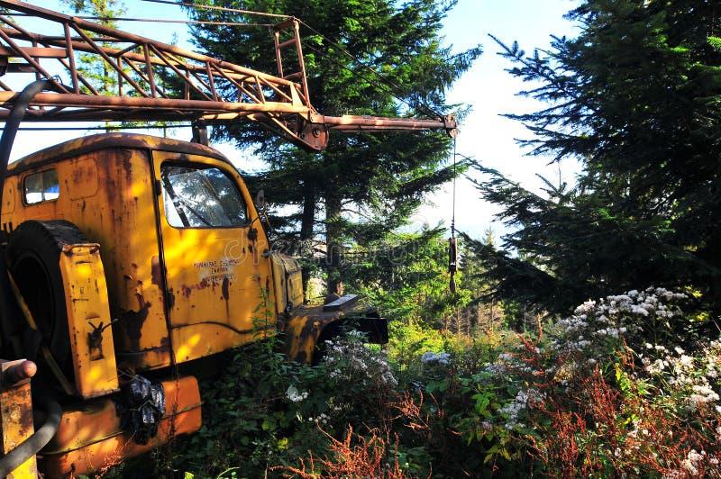 Старый разрушанный кран в лесе стоковые фото