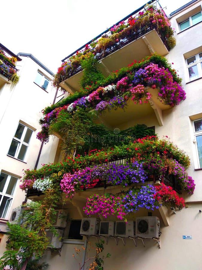 Старый романтичный балкон с цветками в центре Варшавы стоковые фото