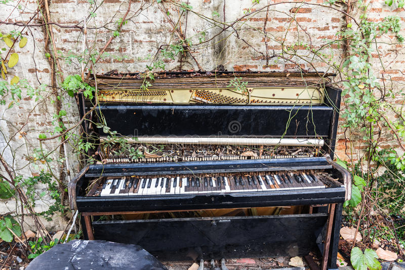 Старый рояль с бетонной стеной и лист стоковые изображения rf