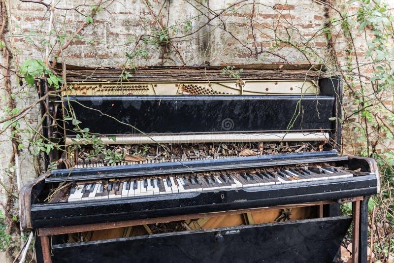 Старый рояль с бетонной стеной и лист стоковое изображение