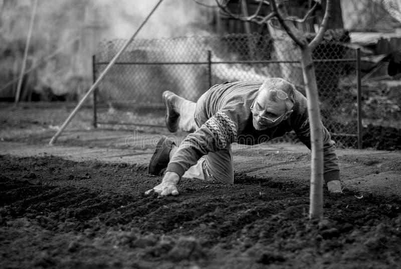 Старый румынский человек работая его земля в традиционном пути с пустыми руками стоковые изображения