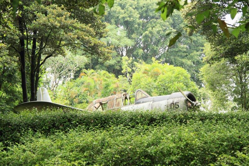 Старый самолет стоковые фото
