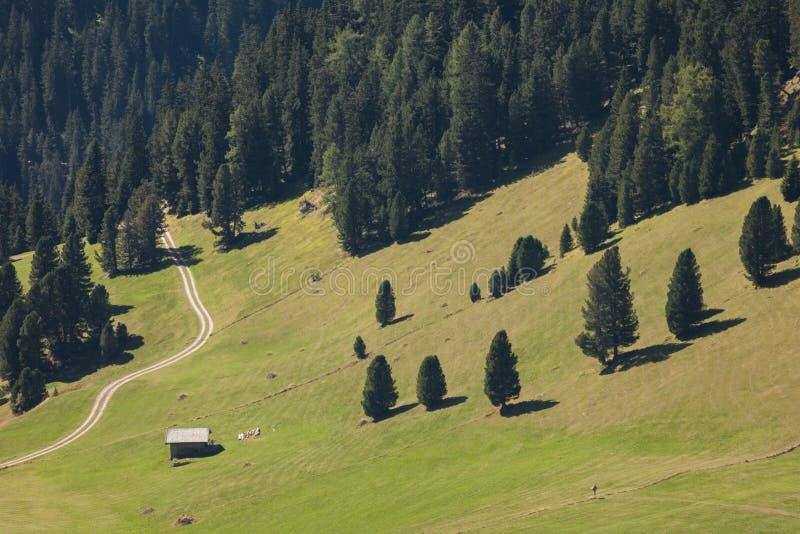Старый сеновал в выгоне в di Funes Val на падении стоковые изображения